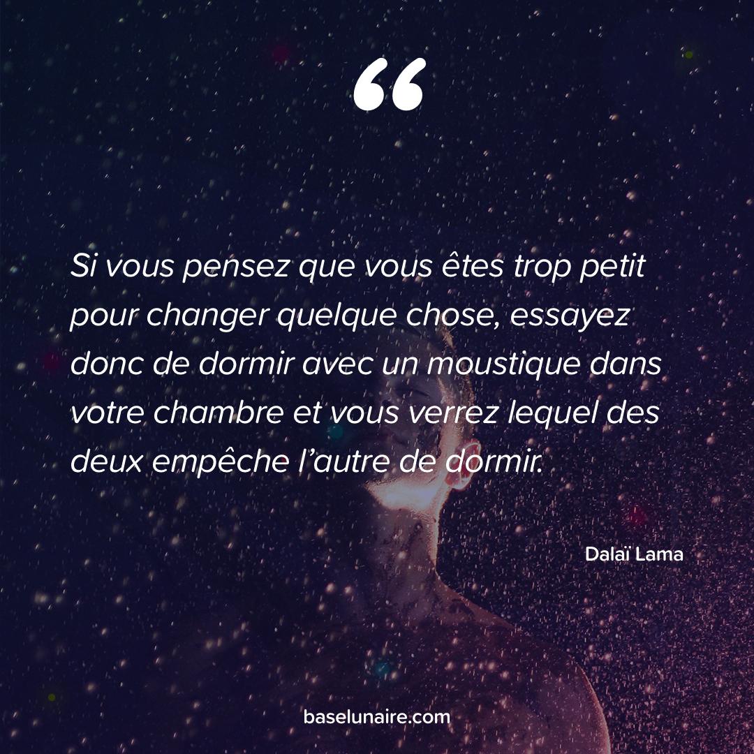 « Si vous pensez que vous êtes trop petit pour changer quelque chose, essayez donc de dormir avec un moustique dans votre chambre et vous verrez lequel des deux empêche l'autre de dormir » - Dalaï Lama