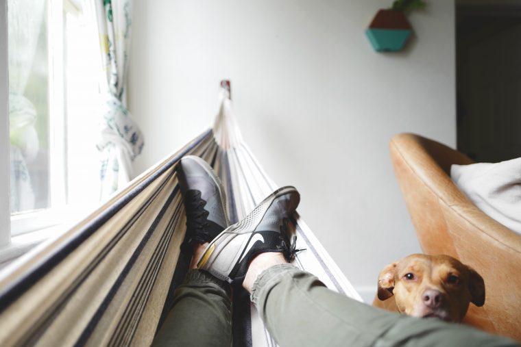 Un homme dans un hamac avec son chien à l'intérieur d'une maison