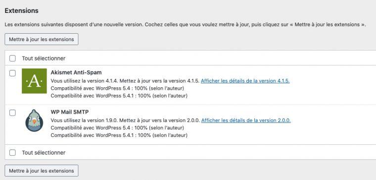 Interface de mises à jour de WordPress dans la partie plugins. Il y a 2 plugins à mettre à jour, Akismet Anti-Spam et WP Mail SMTP